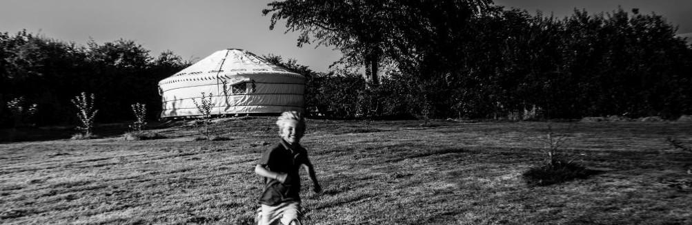 Apple Camping-8
